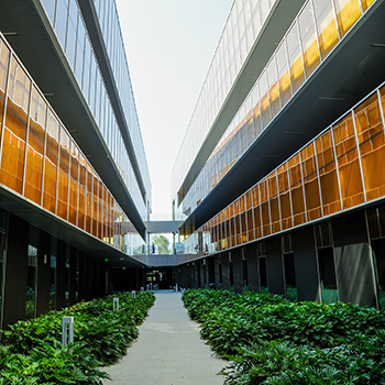 walking path of MBCC building