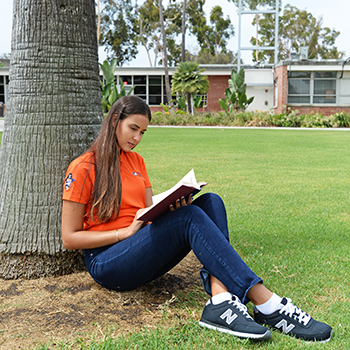 Student reading a book by a palm tree